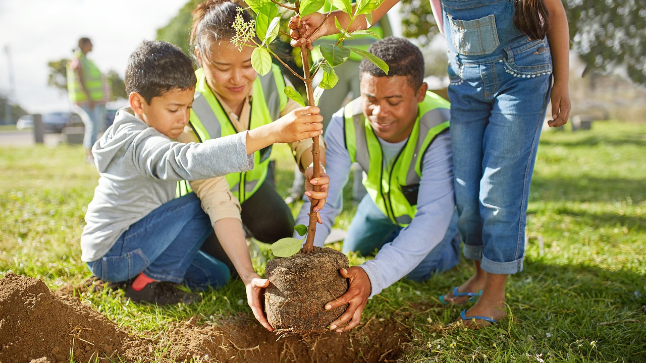 A team planting tree together; image used in help and support