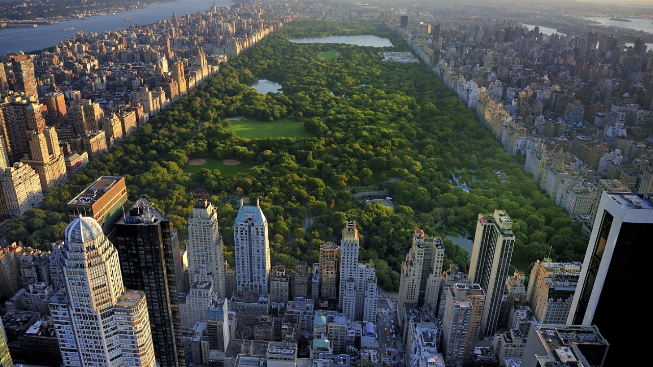 The Central Park in New York; image used in an article of ESG insights