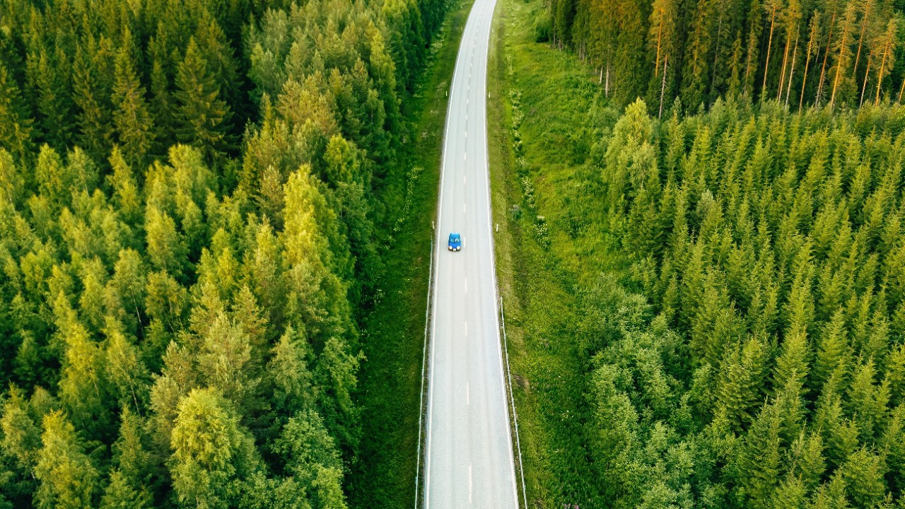 A car is driving through the woods; image used in article of ESG insights