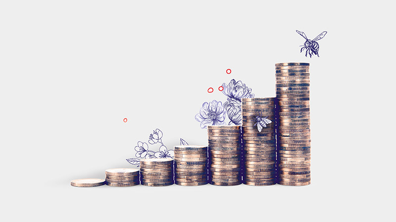 Stacked up coins in front of bee and flower drawings; image used for HSBC Premier page